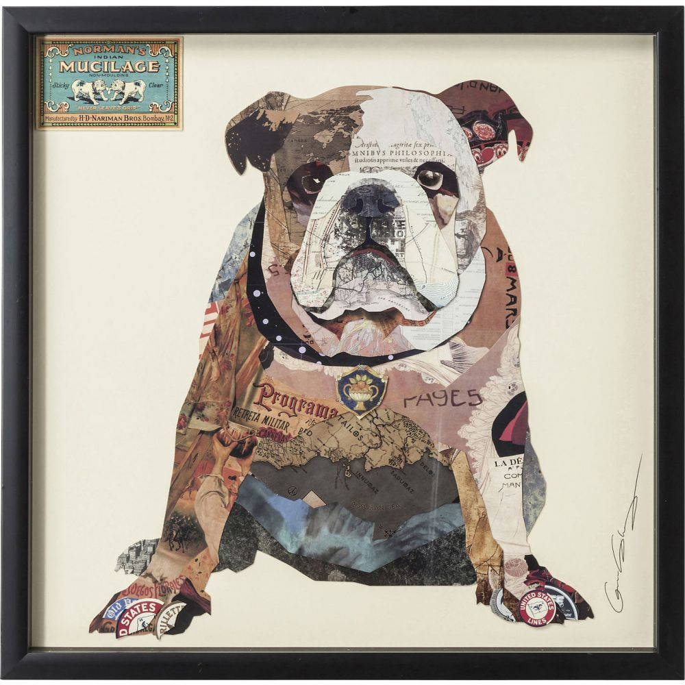 Picture  Frame Art The Dog 61x61cm