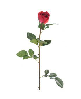 SINGLE ROSE/RED 75CM