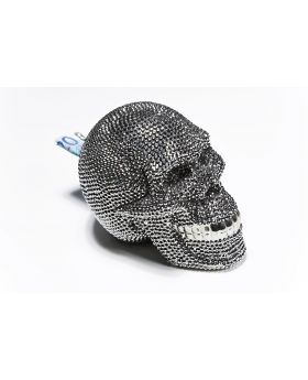Money Box Skull Crystal Silvery