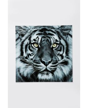 GALLERY GLASS FACE TIGER 80X80CM