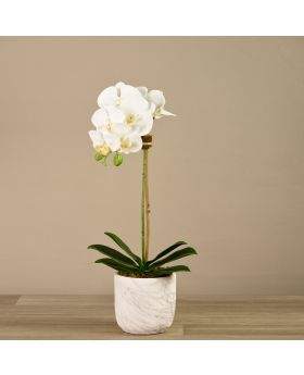 Small Orchid Arrange Marble Looking Pot 3786-10-1