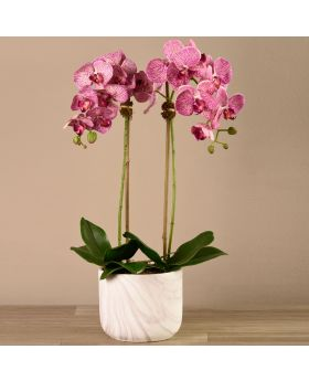 Medium Size Orchid In Marble Looking Pot 3787-45-1