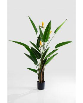 DECO PLANT PARADISE FLOWERS 190CM,GREEN
