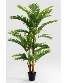 DECO PLANT PALM TREE 190CM,GREEN