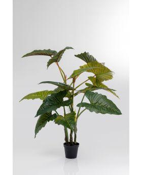 DECO PLANT  TARO 180CM,GREEN