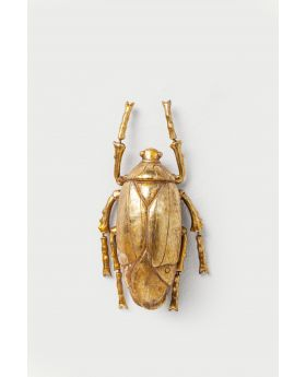 Wall Decoration Plant Beetle Golden