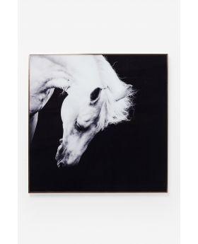 GALLERY ALU PROUD HORSE 100X100CBLACK