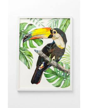 Picture Frame Art Paradise Bird Single