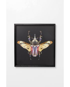 Picture Frame Art Beetle 60X60Cm