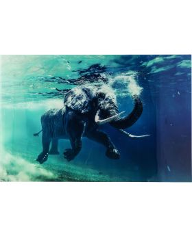 Picture Glass Swimming Elephant 180x12