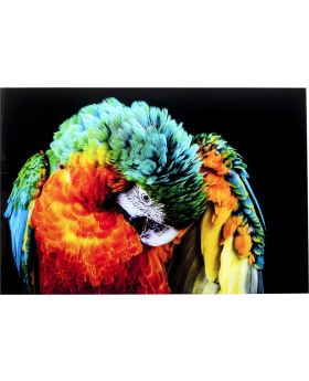 Glass Picture Tropical Parrot 120X80