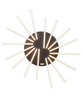 Ceiling Lamp Radiation Black Led (Excluding Bulb And Socket)