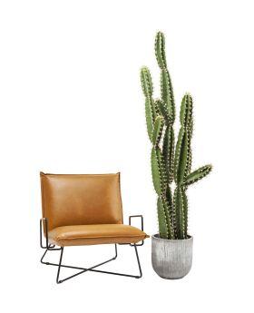Deco Plant Cactus Pot 202cm