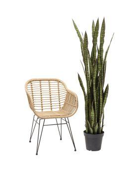 Deco Plant Sansewieria 155cm