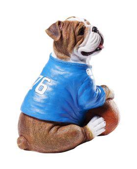 Money Box Football Dog