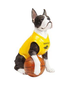 Money Box Basketball Dog