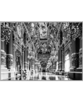 Picture Glass Metallic Versailles 120x80cm