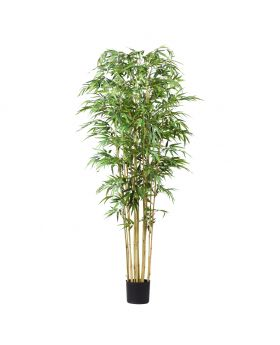 BAMBU Large /GREEN