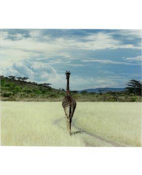 Picture Glass Savanne Giraffe Multicolor